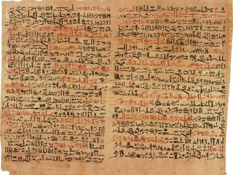 References to NTDs like trachoma have been found in ancient texts such as the Ebers Papyrus from 1500 BC.